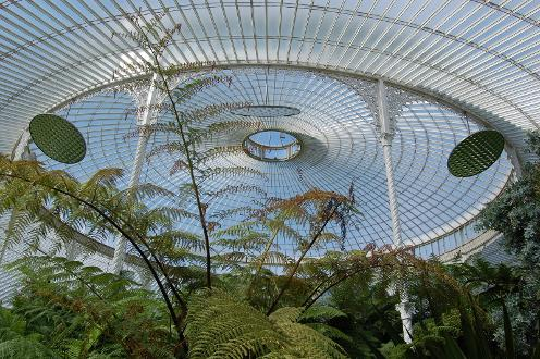 Kibble Palace and the hothouses at Glasgow Botanical Gardens offer the perfect setting for this unique workshop. Drawing on the senses and observation, you will be given fun and stimulating writing exercises. And there is home baking. £35 paid on the day, cash only. E-mail writeherewritenowworkshops@gmail.com to book your space, and remember to Like on Facebook.